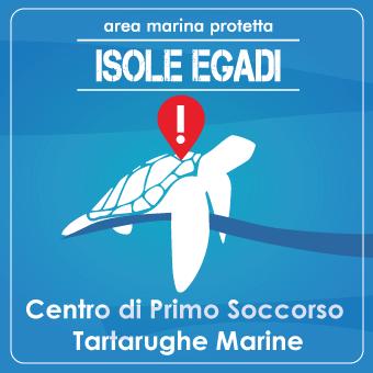 SOS Tarta +39 3283155313